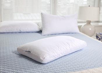latexdown pillow purelatexbliss 1627.jpeg