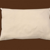 organic cotton pillow naturepedic 10fc6c0c 447a 47a1 bbb1 bf8f2d4cafce.jpeg