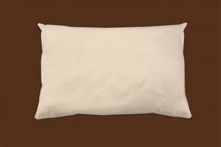 organic cotton pillow naturepedic 10fc6c0c 447a 47a1 bbb1 bf8f2d4cafce.jpeg