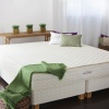 serenity latex mattress savvy rest full.jpg