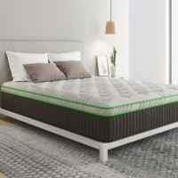 kiwi bedroom rendering